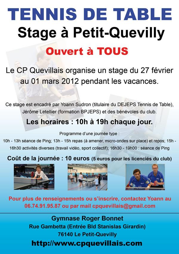 Stage tennis de table normandie rouen petit quevilly - Stage tennis de table hennebont ...